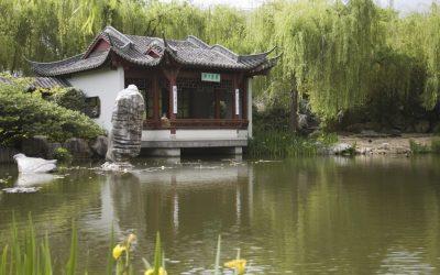 Chinese botannical gardens_NSW_947388_Large
