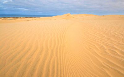 Dunes-North-Island