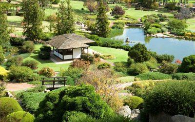 Japanese-gardens-VIC