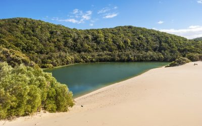 Fraser Island, Lake Wabby, Queensland, Australia