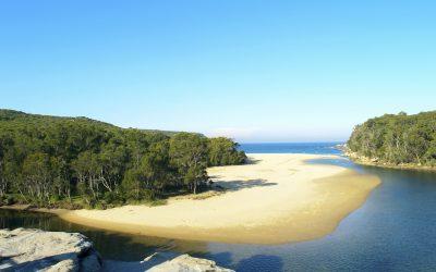 A tropical beach in Sydney National Park