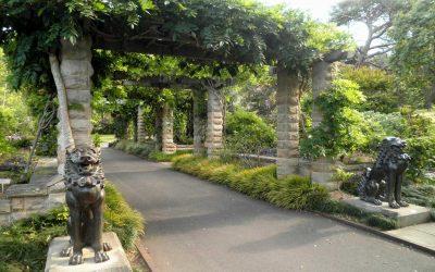 Public-park-pathway-NSW