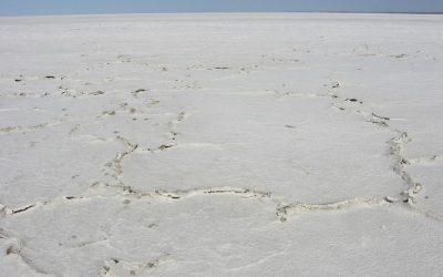 Salt lake_SA_1709304_Medium